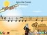 Alice the Camel - SongTorch Audio & Notation File
